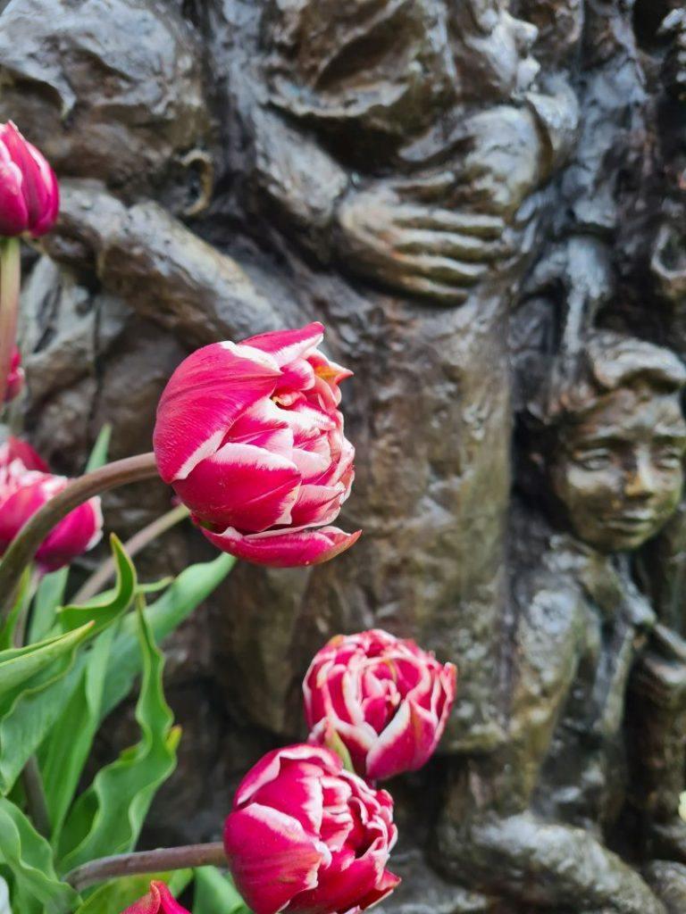 Close up Tante Truustulp bij het beeld